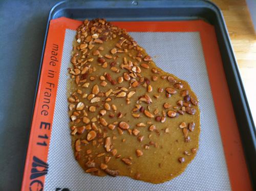 Almond Brittle 1