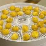 Bearnaise Spheres in Dehydrator